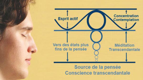 Photo méditant et schéma de présentation de l'expérience de verticalité de la Méditation Transcendantale