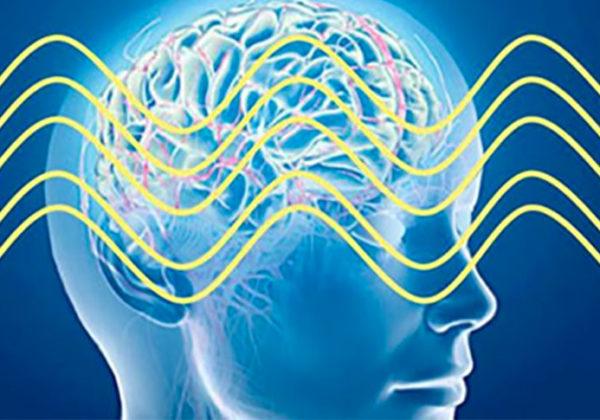 Méditation Transcendantale et développement du cerveau