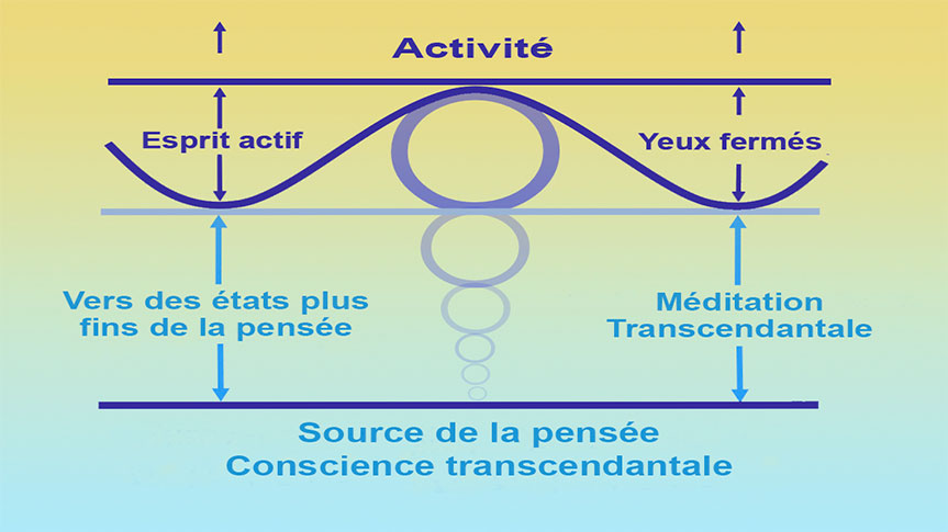 Schéma présentant l'expérience de la transcendance et de la Conscience transcendantale durant la Méditation Transcendantale